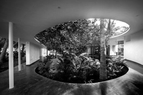 Office around a Tree